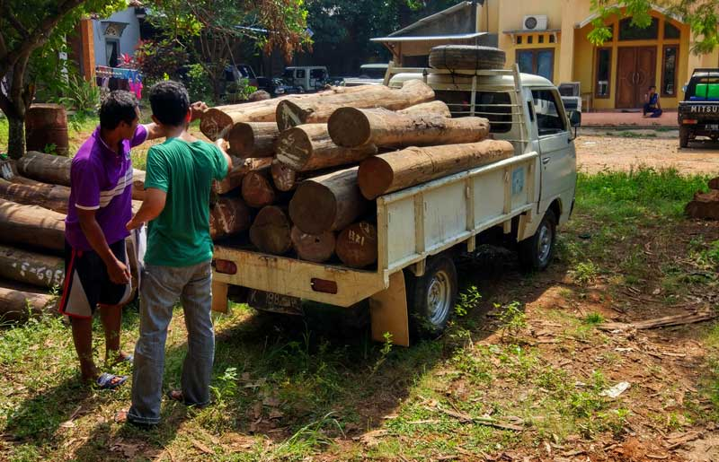 Selecting the highest quality teak wood for our furniture.