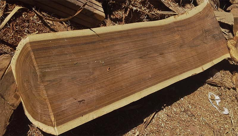 7 Most used Indonesian woods for furniture - Saillant Furniture