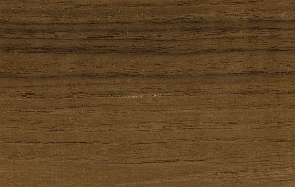Teak wood texture jepara indonesia